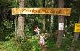 Zauberwald / Zum Vergrößern auf das Bild klicken